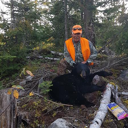Hunt Black Bear in Northern Ontario
